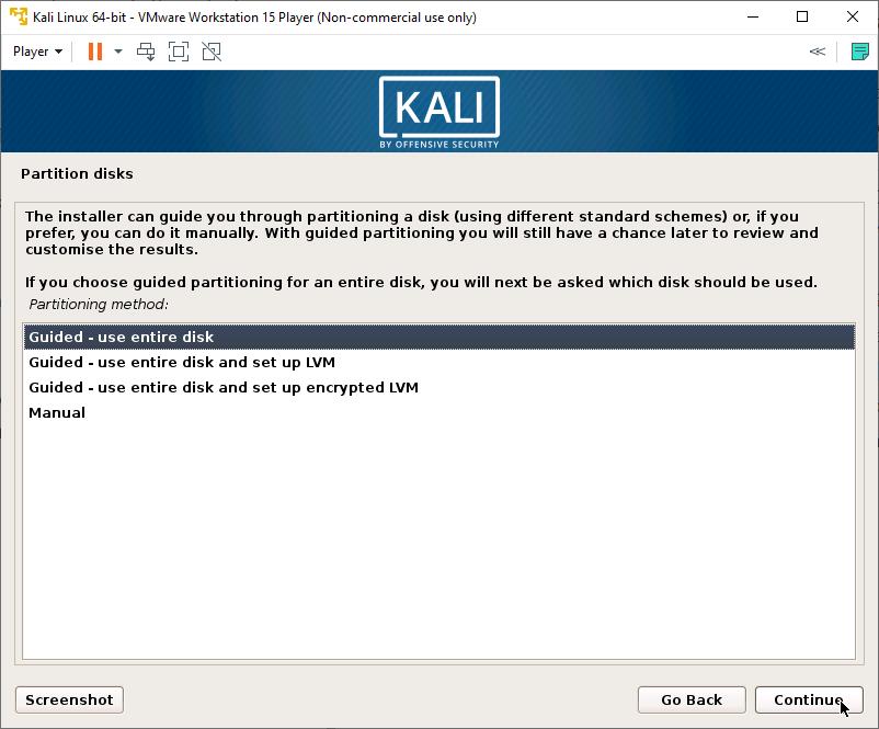 Kali Linux Installer - Partition Disk